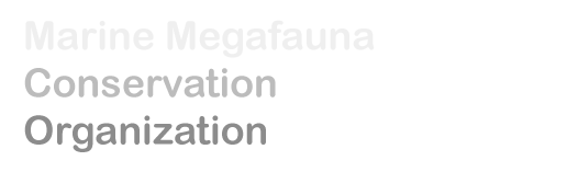 Marine megafauna conservation organization
